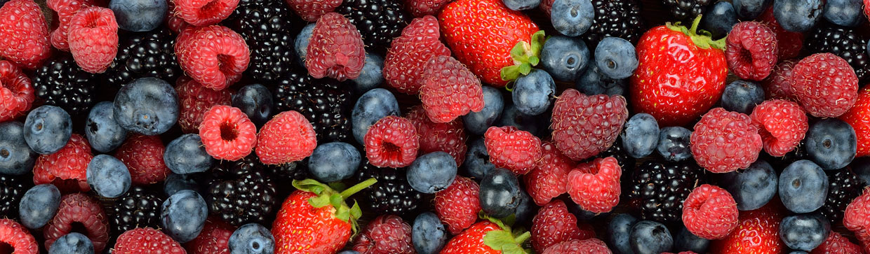 supplier of fresh class A berries
